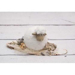 Schaf auf Holz