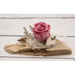 Rosa Rose Schwemmholz