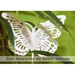 Schmetterling Geburtstag