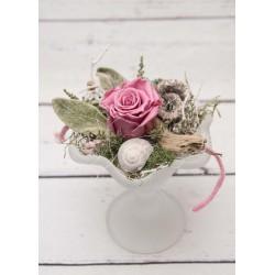 Schale Rose