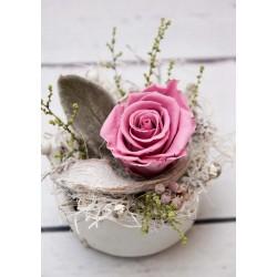 Rose in Krone