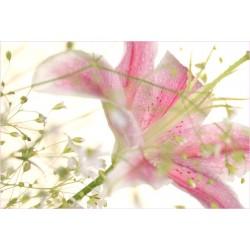 Tischset Lilie rosa
