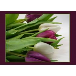 Tischset Tulpen lila
