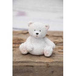 Winter - Teddy