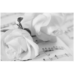 Tischset Rosen schwarz-weiss